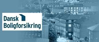 Dansk Boligforsikring – høj faglighed og all around rådgivning